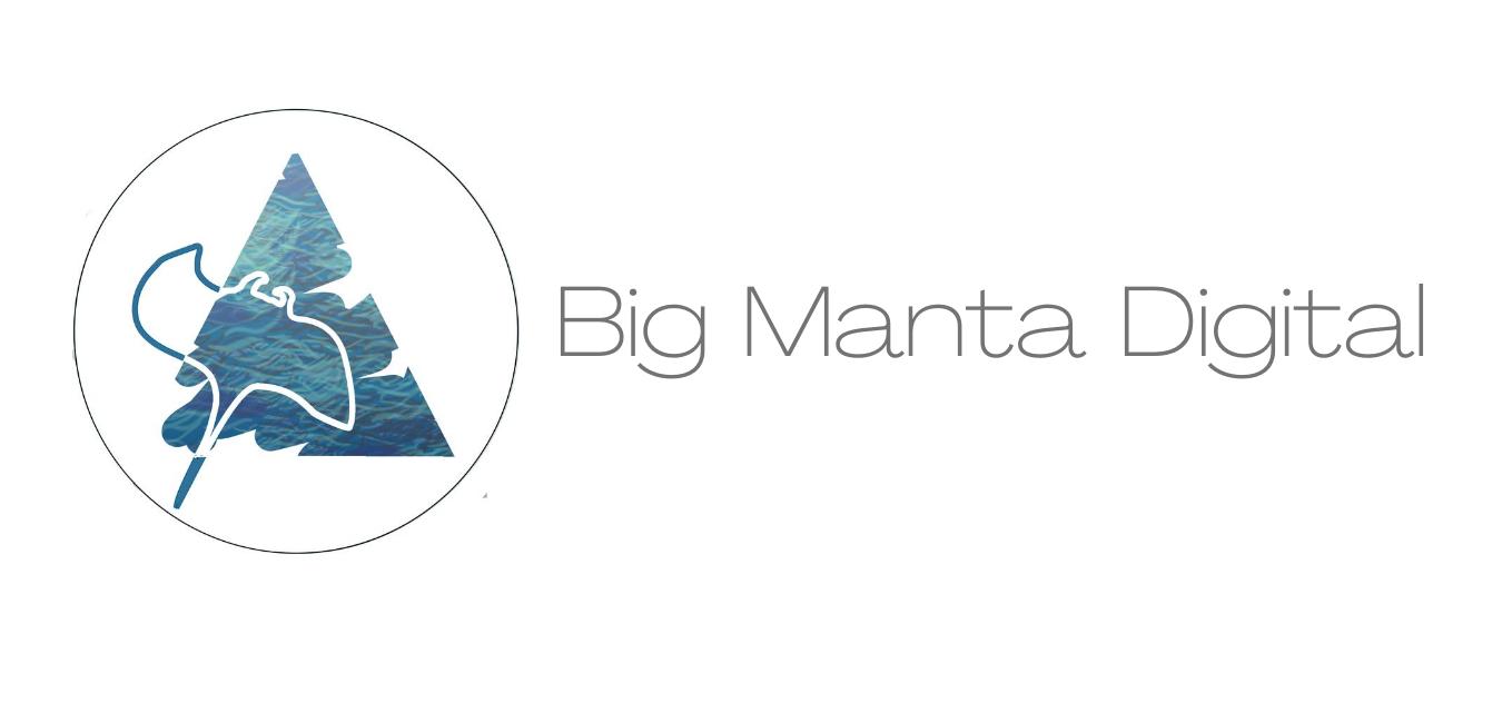 Big Manta header